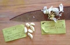Always remove the center of the garlic cloves when using garlic.