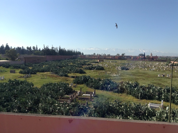 View of Cemetery from Riad in Marrakesh