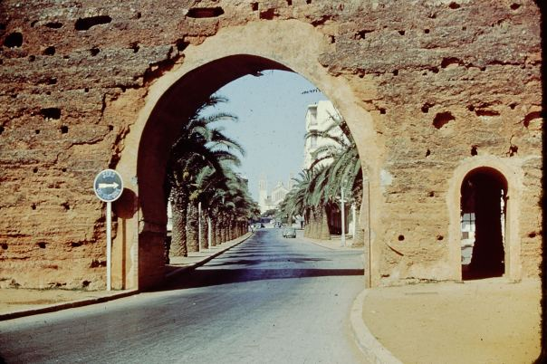 Moroccan Wall/Gate/Passage