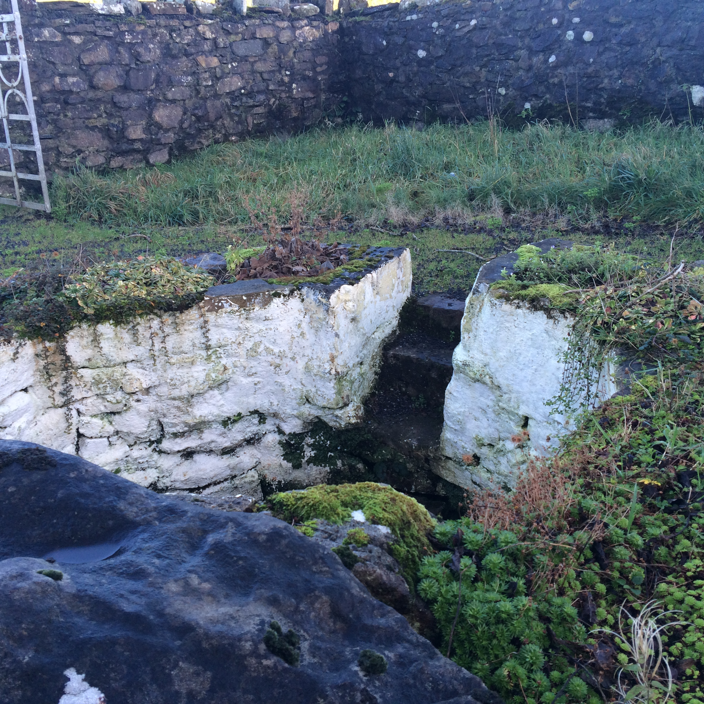 Holy Well with Rock