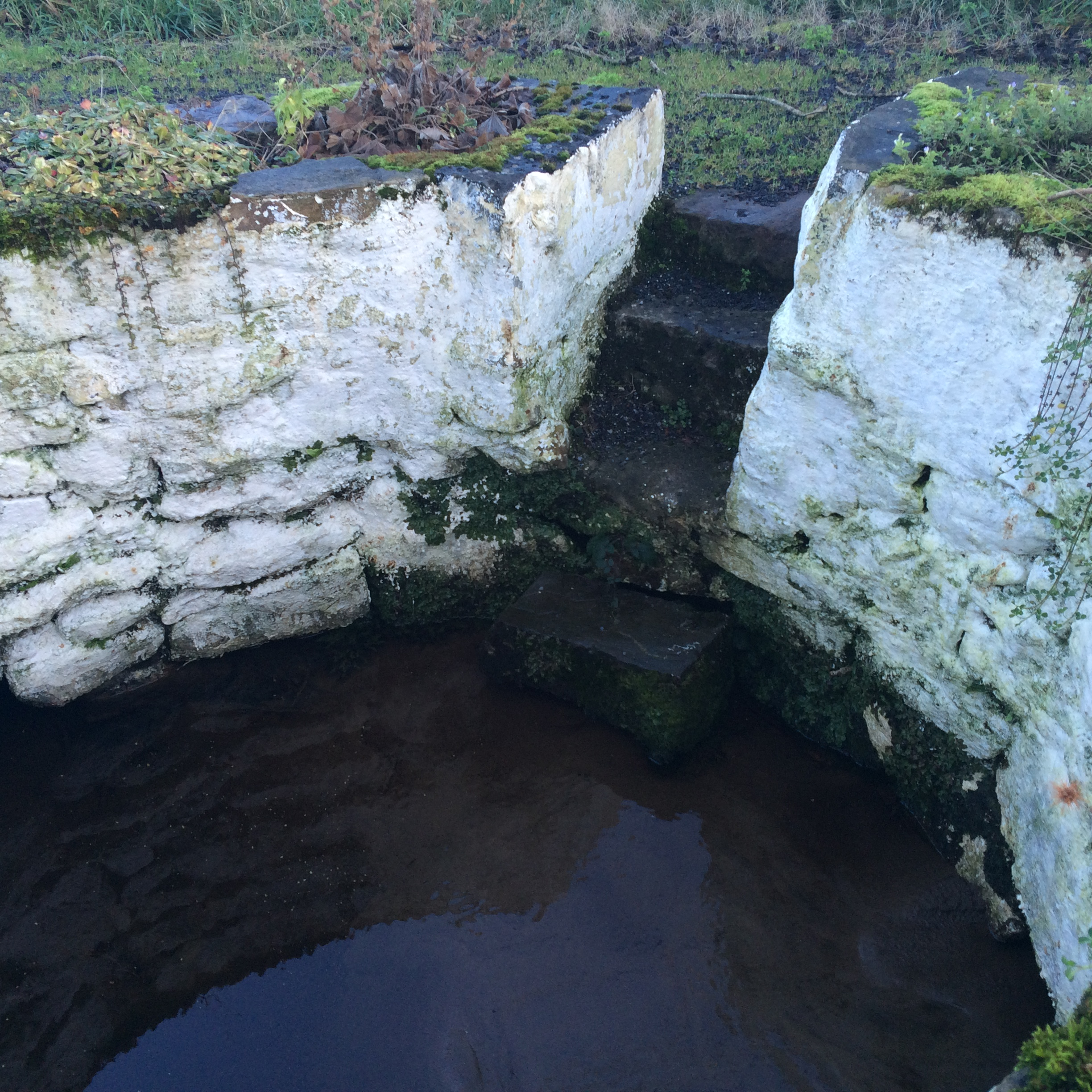 Holy Well with Steps